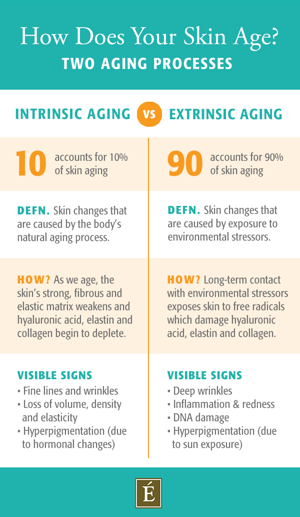 intrinsic vs extrinsic aging infographic