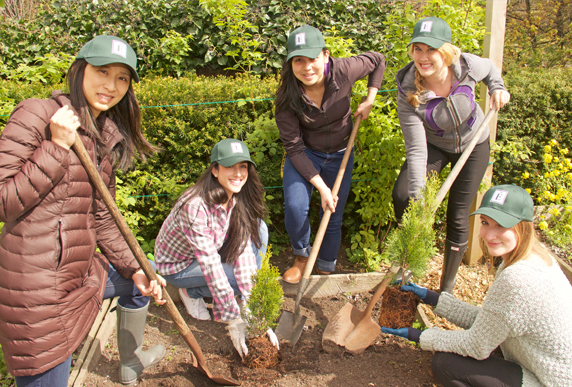 Eminence Organics team members planing trees for Earth Day