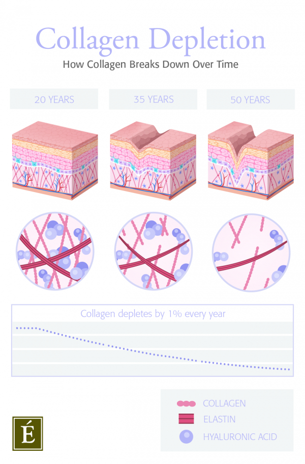 collagen depletion infographic