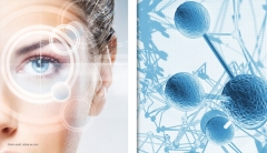 The Future of Skin Care: Stem Cell Technology